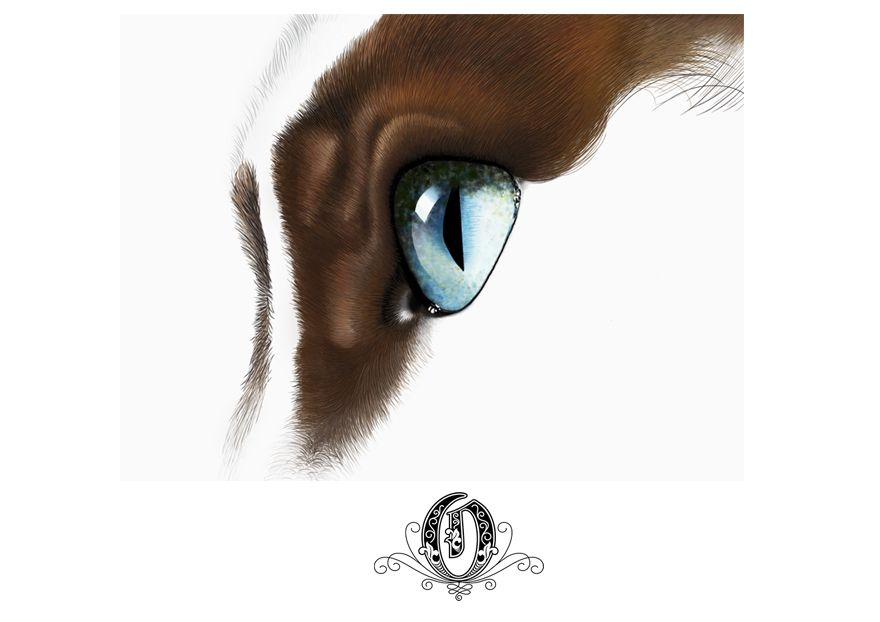 Affordable Top Creative Marketing - Digital Cat Eye
