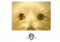 Affordable Top Creative Marketing - Oil Painting/Dog